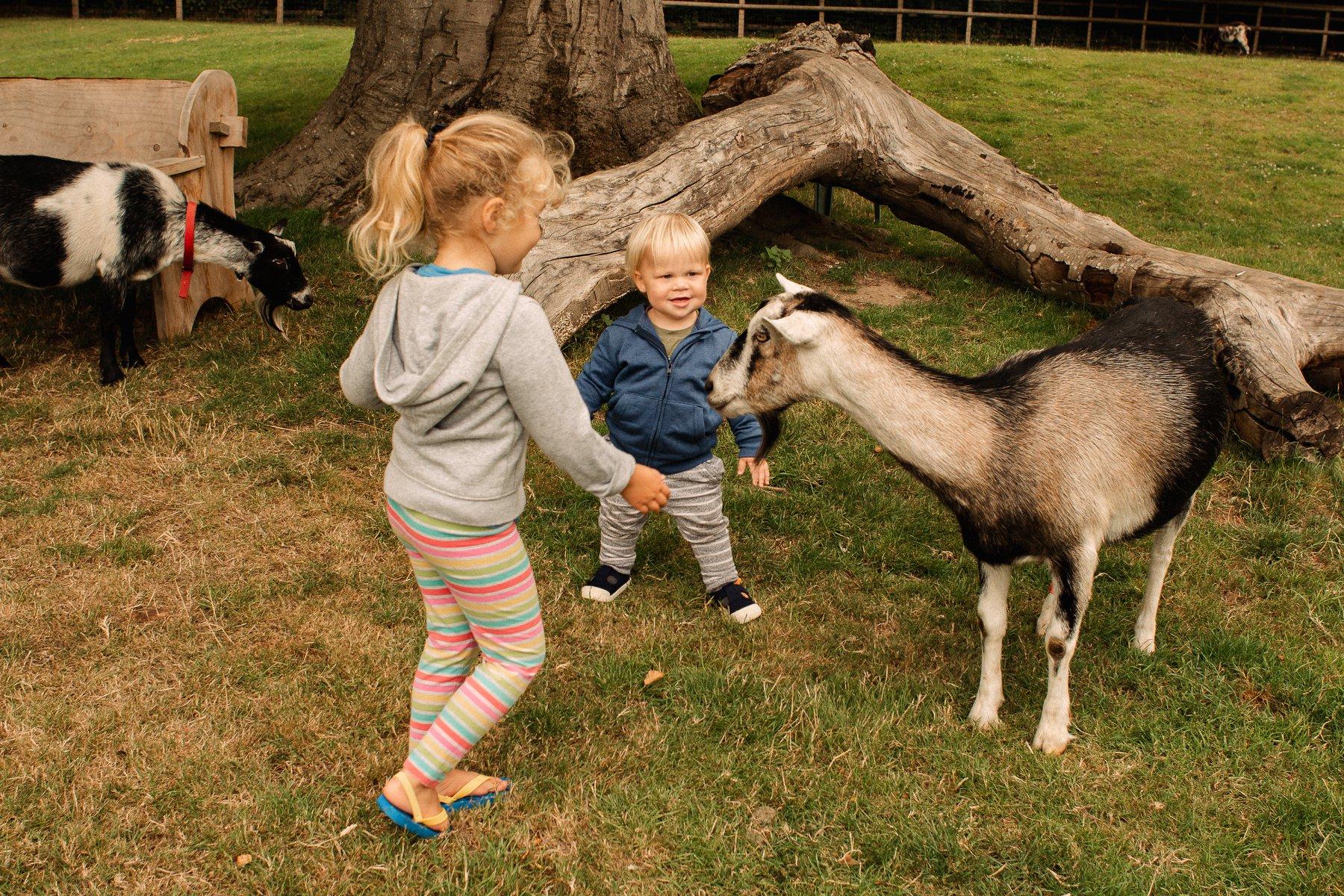 dougal photography, farm photography, inspiration photography, farm photography, maternity photography
